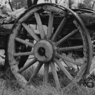 design evolution by wheel